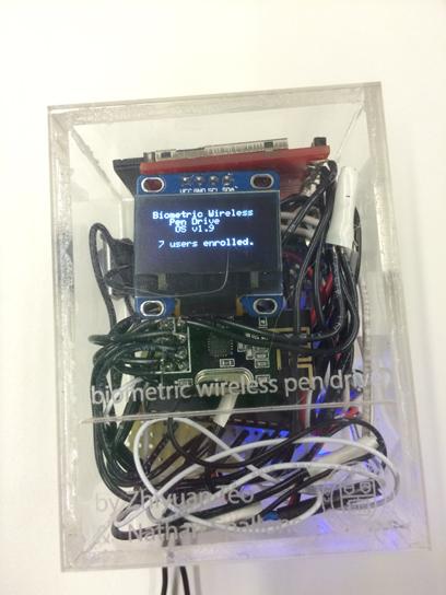 Wireless storage with biometric authentication